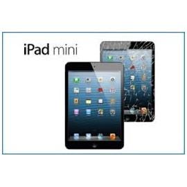 Cambio Digitalizador iPad Mini
