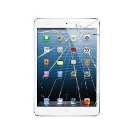 Cambio Digitalizador iPad Mini 3