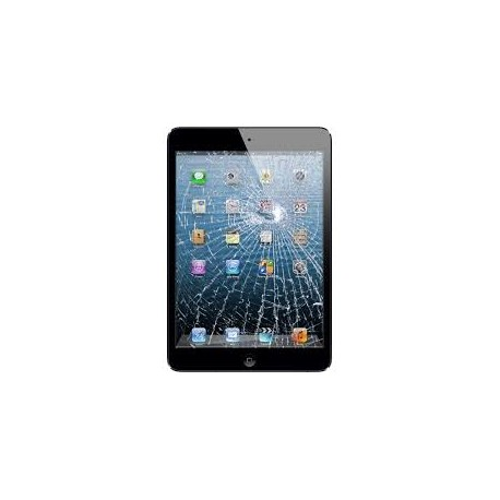 Cambio Pantalla Táctil (Digitalizador) y Marco iPad